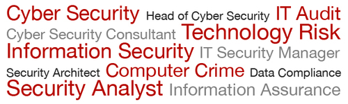 Job Types on CareersinCyberSecurity