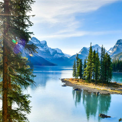 Physician Specialist and Family Physician Jobs in Canada