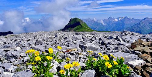 Alpen in Frankerich - Leben und Arbeiten im Ausland