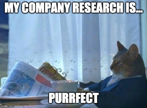 cat news meme