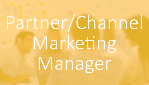 Software & Technology Marketing Jobs - Partner/Channel Marketing Manager Job