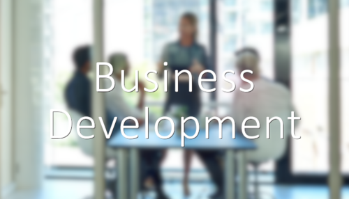 Specialists in recruiting business development jobs