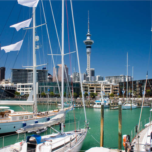 New Zealand Medical Careers and Jobs