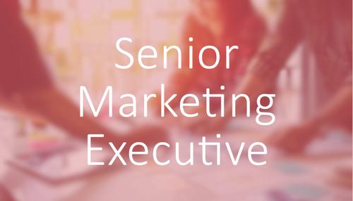 Software & Technology - Senior Marketing Executive Job